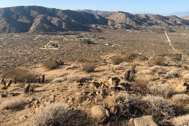 The Mojave Desert Land Trust has acquired 43 acres along Highway 62 in the Morongo Valley.