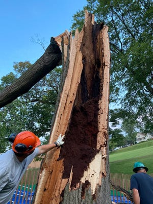 Crews asses storm damage at Palmer Park in Port Huron following severe storms on Wednesday, Aug. 11, 2021.