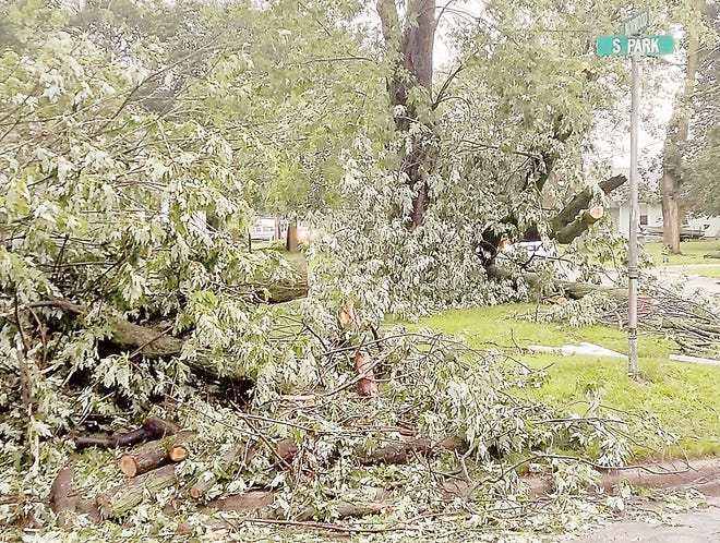 Sturgis city crews will begin brush pick-up Aug. 25, to collect limbs and branches caused by recent storms. The city has declared a local state of emergency due to impact of the storms.