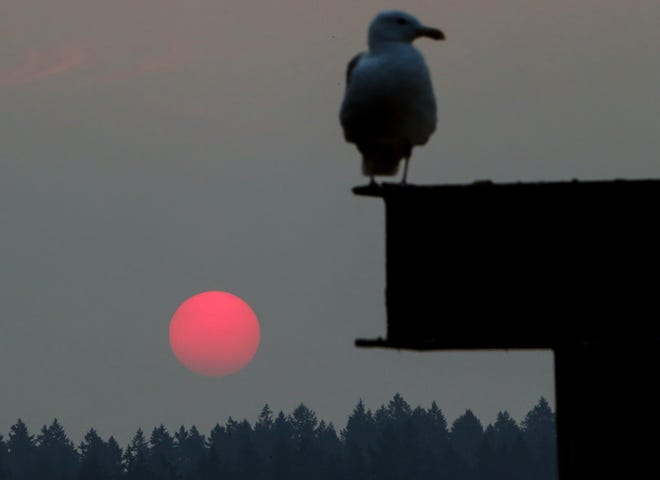 The sun is just visible through the thick haze and smoke at the Brownsville Marina at sunrise on Friday.