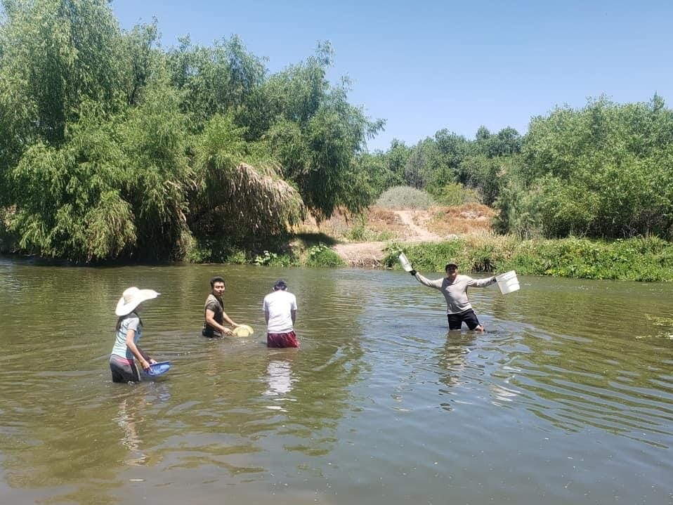 Clam digging in Arizona rivers is a summer pastime for some Cambodian Americans.