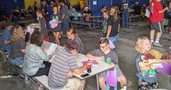 4-H'ers checked in their static projects and had them judged Monday at the Brown County Fairgrounds.