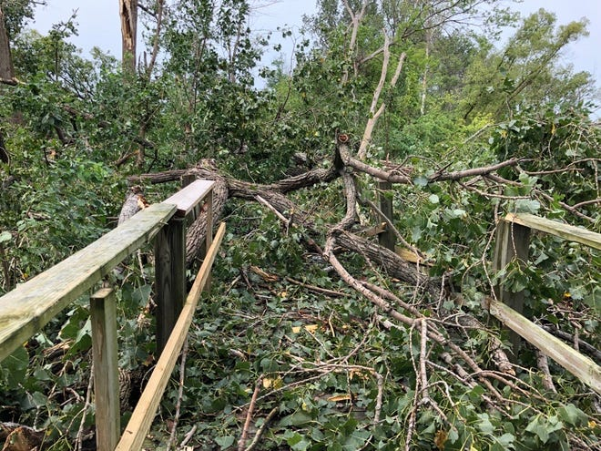 A portion of Ottawa County's Magee Marsh Wildlife Area, including the boardwalk seen here, suffered significant damage after a strong storm went through the area on Tuesday, according to the Ohio Department of Natural Resources Division of Wildlife.