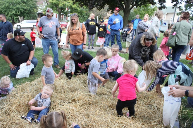 Orion Fall Festival's Candy in the Hay Find is popular with young children, who enjoy digging through straw to find treats. This year's Candy in the Hay Find will be at 10 a.m. Saturday, Sept. 4, near the flower garden between the band shell and the Orion Lions Club picnic shelter.