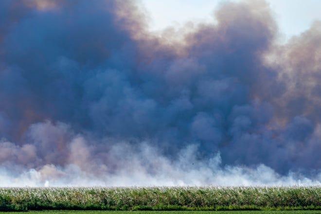 A sugar cane field burns outside of Pahokee.. GREG LOVETT/The Palm Beach Post