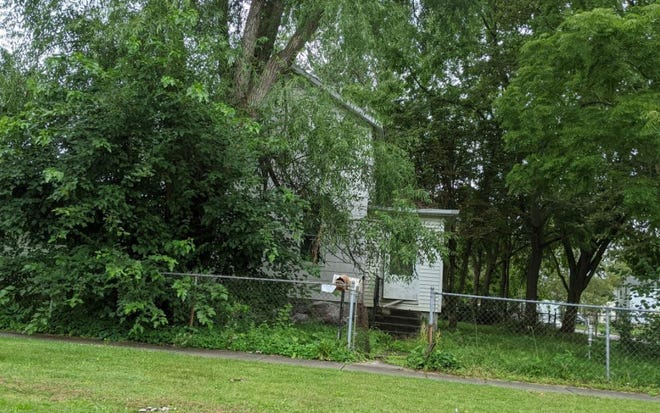 A house at 303 Sandusky Ave. is overgrown with weeds and trees and its front door is wide open.