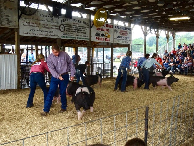 The 17- and 18-year-old class competes in the Junior Fair Swine Showmanship contest on Monday, Aug. 16, 2021. For many, it's their last year to participate.