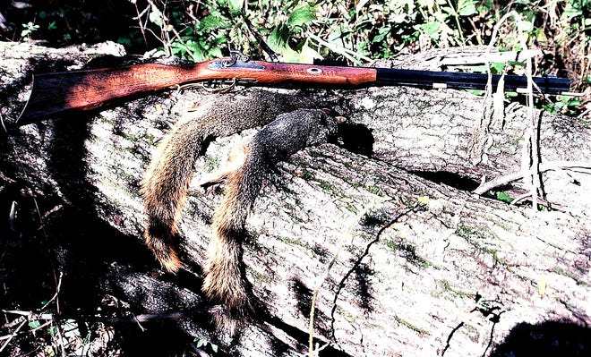Early fall is a great time to venture into the woods to hunt squirrel.