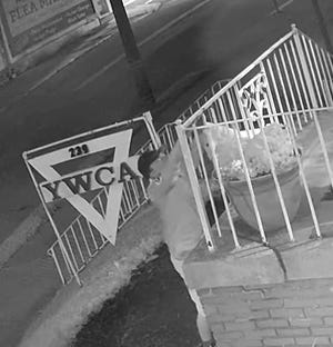 A vandal appears on security footage cutting down a sign on the Alliance YWCA on Thursday, August 12, 2021.