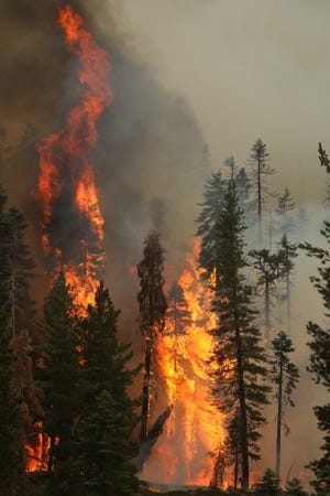 The Morgan Fire burns inside Lassen Volcanic National Park near Kings Creek on Tuesday afternoon, Aug. 17, 2021.