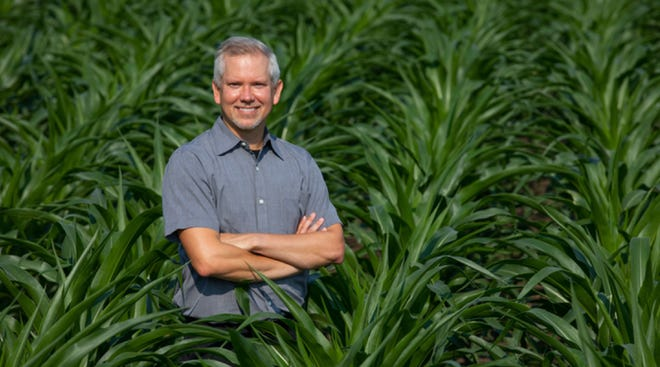 Matthew Hufford is the first author of a study detailing the genomes of 26 lines of corn. Hufford said the sheer genetic diversity present in corn created hurdles for the assembly of the genomes. Around 85% of the corn genome is composed repeated patters.