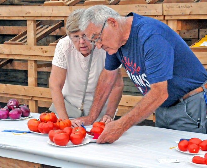 Pat and MIke Hartel of Wooster check out the plates of tomatoes on display at a previous Wayne County Fair.