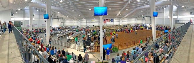 This is a panoramic photo of the event center on the Wayne County Fairgrounds with two livestock shows going on at the same time during a previous Wayne County Fair. The event center will be a busy place for animal shows during the 2021 Wayne County Fair, which is Sept. 11-16.