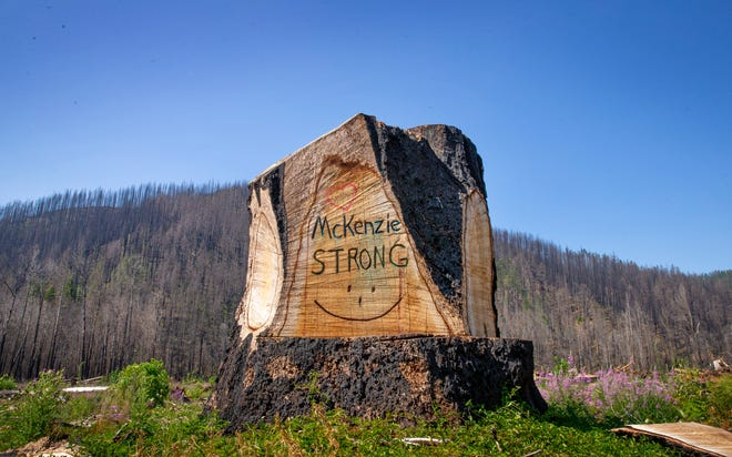 Artwork on the stump of a tree taken down after the Holiday Farm Fire faces traffic in Highway 126 east of Blue River.
