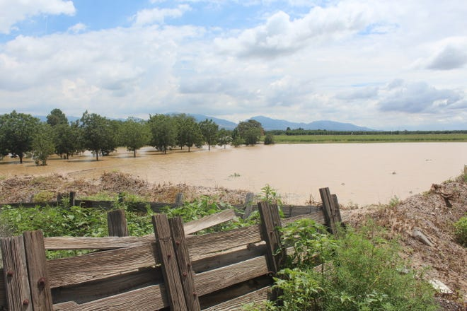 A flooded orchard and field is pictured near La Union, N.M., where heavy rainfall caused substantial flooding beginning Thursday, Aug. 12, 2021.