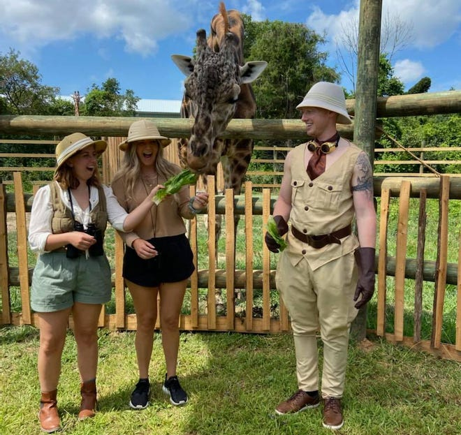 Animal care staff at the African Safari Wildlife Park are now offering public feedings guests can participate in at their new walk-thru giraffe exhibit, which opened this week.