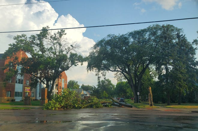 A tree blocks a street on the northwest edge of Northern State University after a thunderstorm rolled through Aberdeen Sunday evening. The National Weather Service received reports of tree and power line damage in the Aberdeen area.