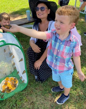 Cooper Sisson, age 5, releases a monarch butterfly while Vickie Hansen looks on. Cooper is in Mrs. Smith's kindergarten class at Cedarville Elementary School.