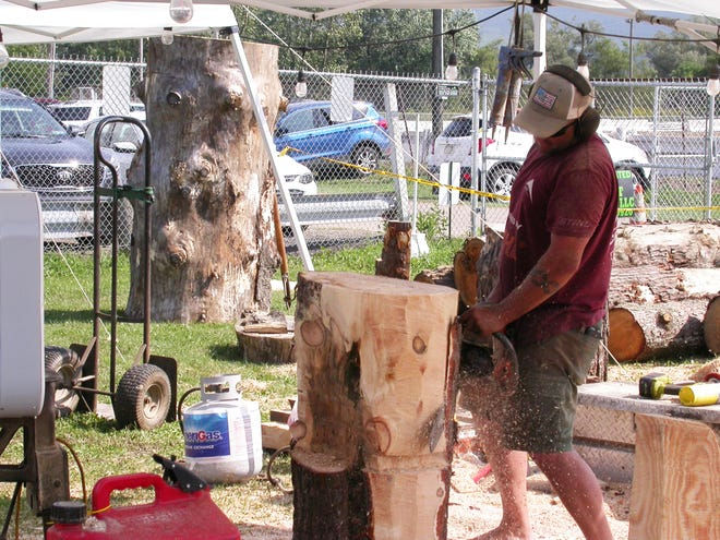 """""""Mountain"""" Mike Ayer, a chainsaw sculptor, is planning to conduct woodcarving demonstrations at 11 a.m., 3 p.m., and 7 p.m. each day through Friday at the Somerset County Fair. His sculptures are to be auctioned at 7 p.m. Friday in the Decker Barn. The fair began Thursday and is to conclude Saturday."""