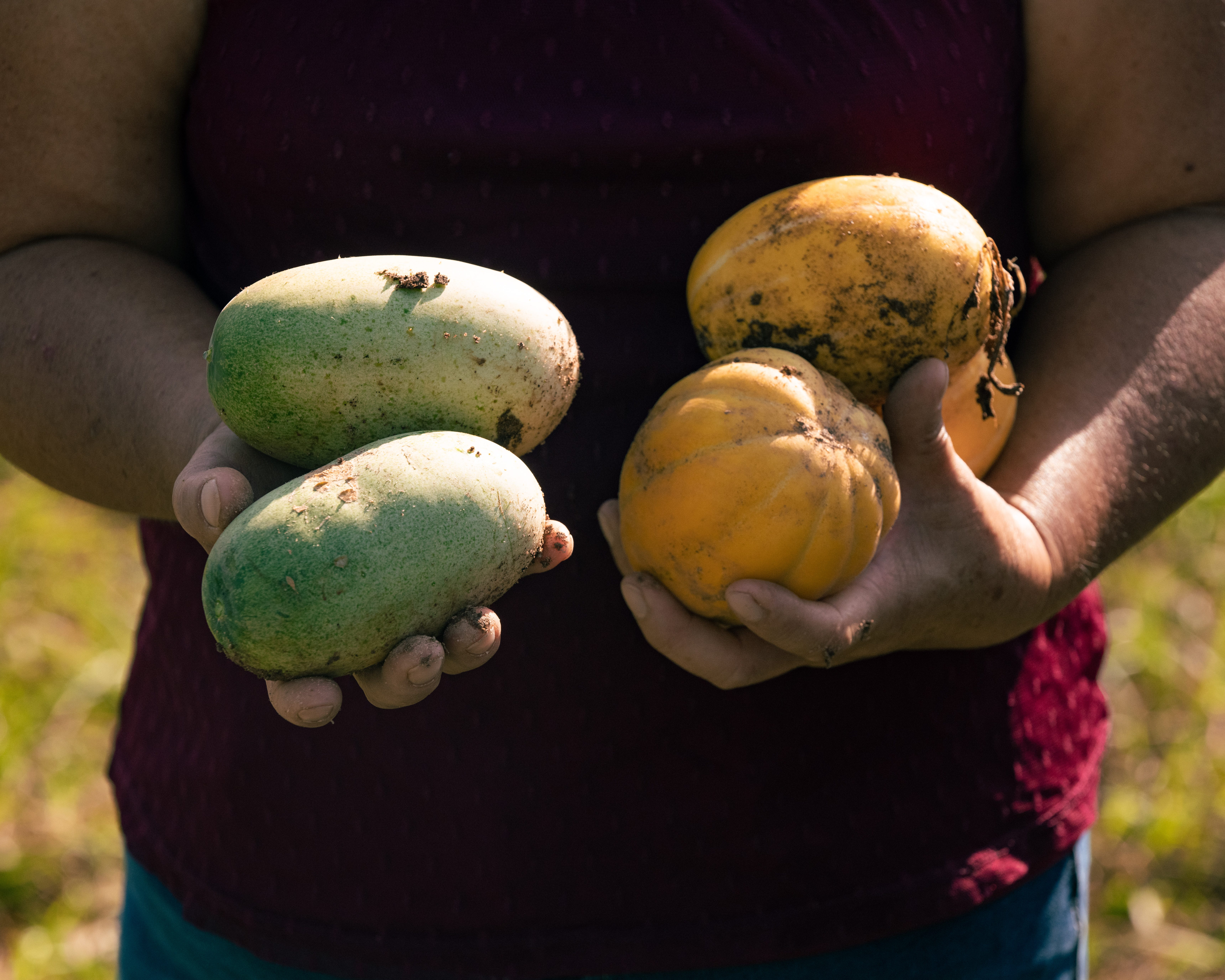 Chue Lee of Lee's One Fortune Farm holds melons and cucumbers grown on her property in Morganton.