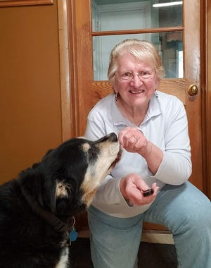 The older but wiser Sunny enjoys special treats and quick walks with Susan.