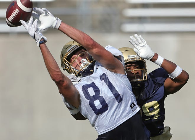 The University of Akron is offering complimentary tickets to area high school students for the Zips' football home opener Sept. 11 against Temple. [Jeff Lange/Beacon Journal]