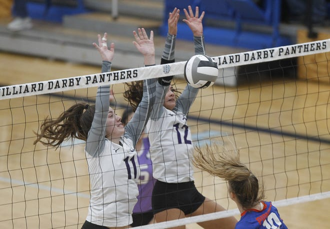 Morgan Tydings and Gabbi D'Amico are both returning starters for DeSales, which began the season short on varsity experience. The Stallions have won district championships in nine of the past 10 years.