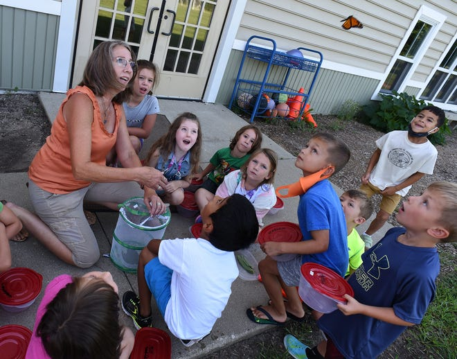 Meadow Montessori teacher Beth Patton releases a Monarch butterfly as the children watch it fly away  attending the week long Monarch Butterfly Camp at the school in Monroe.