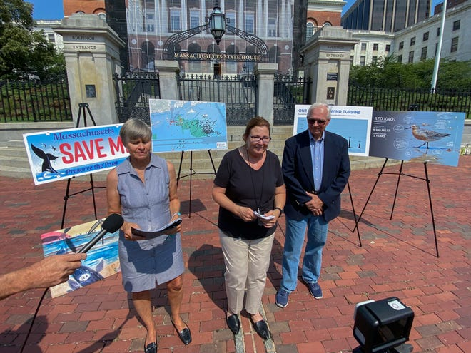Vallorie Oliver, center, co-founder of Nantucket Residents Against Turbines, announced a lawsuit aimed at stopping the construction of wind turbines off the coast of Nantucket. Mary Chalke, left, co-founder of the organization, and David Stevenson, right, policy director at Caesar Rodney institute, also attended.