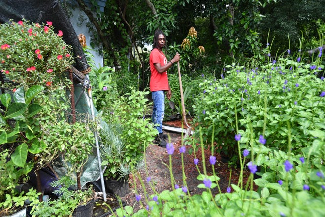 Christopher Dawes has created an organic urban farm at his home in Bradenton. He has taught people how to farm without using chemicals. With help from grants and a Small Business Association loan, he hopes to move and expand his operation in the U.S. Virgin Islands.