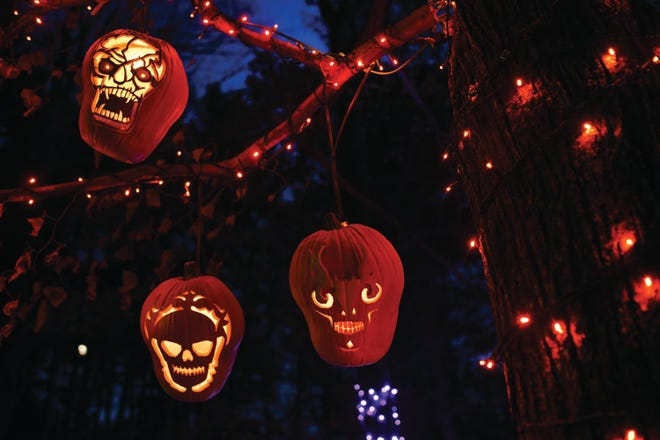 Jack-o-lanterns light up the trees at the Incredible Naumkeag Pumpkin Show, held annually in October in Stockbridge.