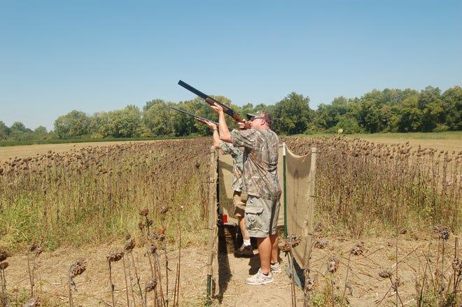 Dove hunters take aim at passing birds.