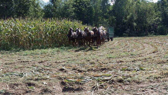 An  Organic Farming Conference will be held at the Event Center in Mount Hope on Nov.11-12.