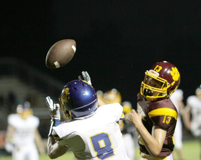 Centreville's Brandon Reed hauls in a pass for a touchdown on Thursday night against Niles-Brandywine.