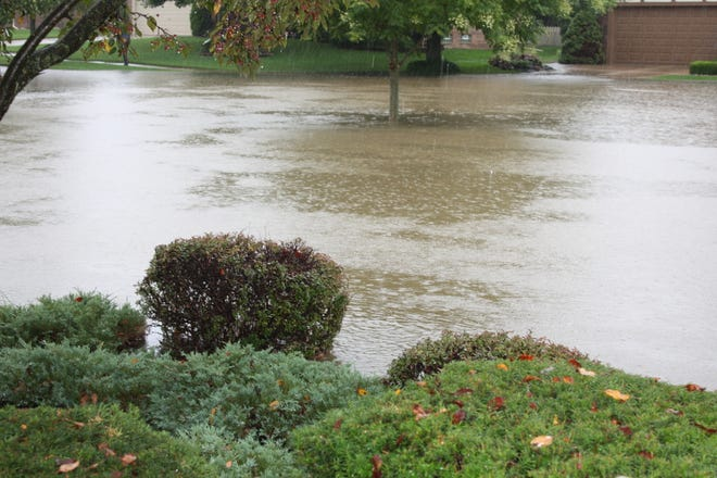 Residents of Livonia's Willow Woods subdivision say rain water creeps up their driveways and they fear it will eventually get in their homes.