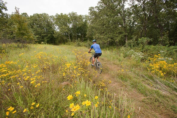 MDC has proposed regulations that would allow the expanded use of bicycles and electric bicycles on most department-area service roads and multi-use trails, such as at Canaan Conservation Area in Gasconade County (shown).