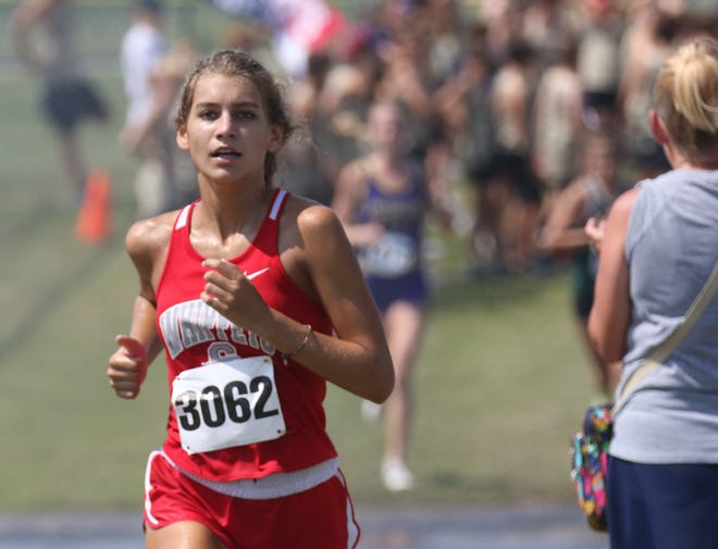 Shelby's Kayla Gonzales broke the school record with her time of 18:46.6 at the Tiffin Cross Country Carnival on Saturday.