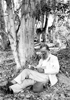 John Muir reading in Andreas Canyon in 1905. Photograph by Helen Lukens