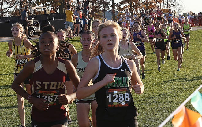 Junior Olivia Oiler and Coffman are aiming for a return trip to the Division I state meet. Oiler placed 75th a year ago, and the Shamrocks were 15th as a team.