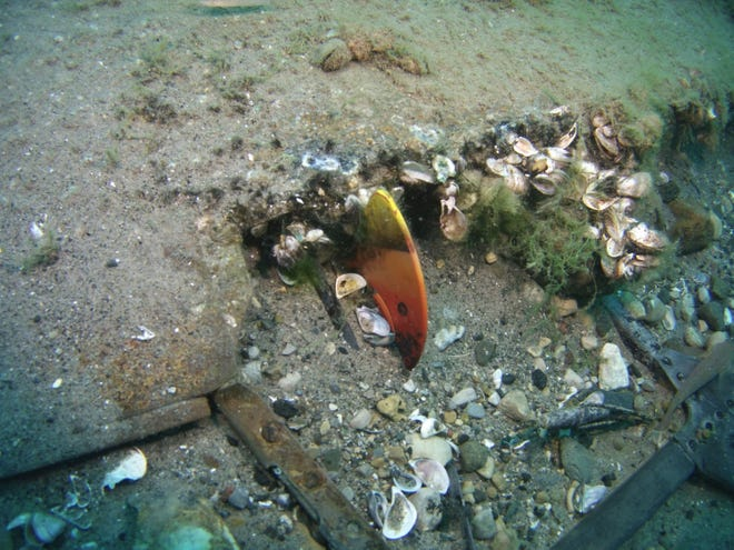 This 2015 file photo provided by NOAA Thunder Bay National Marine Sanctuary shows a section of wreckage of a P-39 at the bottom of Lake Huron. The wreckage is a plane that was piloted by a member of the famed Tuskegee Airmen and crashed seven decades ago during a training exercise.