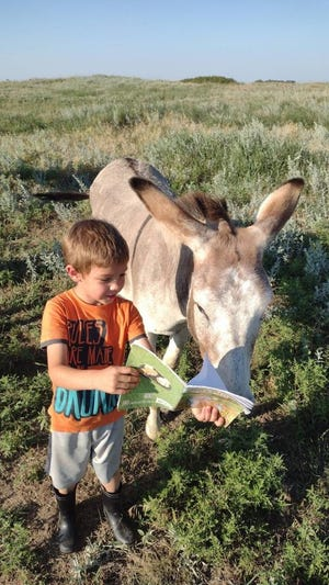 Brody Dutton reads to his donkey, Dory, as part of Macksville's summer reading program earlier this month.