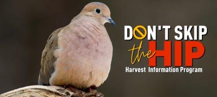 Dove season opens soon in Kansas.