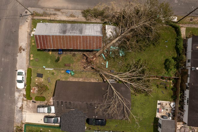 Trees fell on neighboring homes in Thibodaux as seen Aug. 31, two days after Hurricane Ida hit.