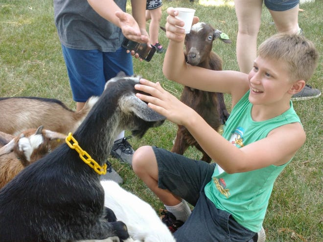 Evan Orwig appeared to have a good time feeding the goats at Miller's Petting Zoo, which was part of the 2021 Aug. 27-28 Heritage Days celebration.