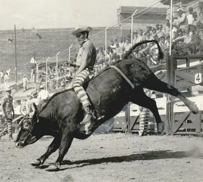 A prisoner wearing distinctive, striped pants holds tight as he rides a bucking bull Sept. 4, 1957, during the annual prison rodeo at the Oklahoma State Penitentiary in McAlester. The maximum-security prison's first inmate rodeo occurred in 1940 and was traditionally held the weekend before Labor Day. The rodeo continued most years until its last event in 2009.