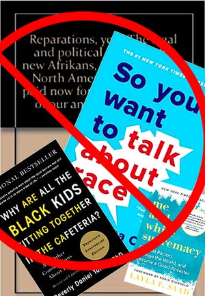 Examples of some of the books included in Central York School District's ban on diversity teaching materials.