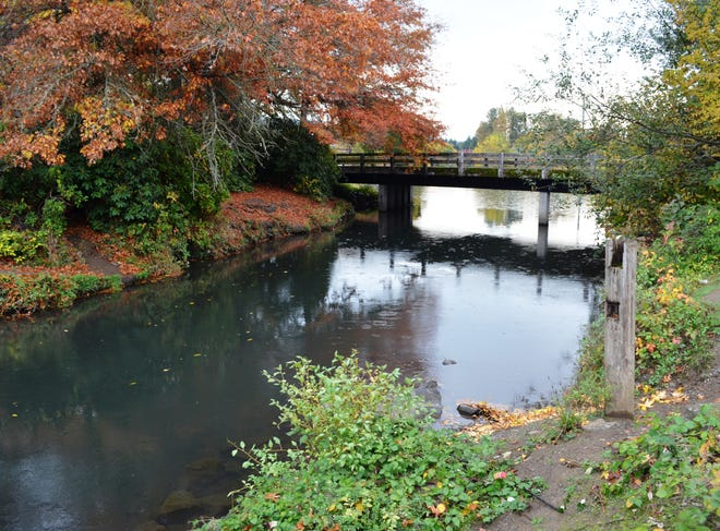The Alton Baker Canoe Canal in Eugene/Springfield, where the anglers are stoked, and the trout have been stocked.