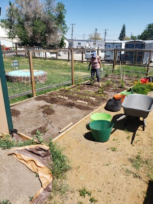 Master Gardeners have used underutilized space within the Sixth Ward Garden Park to grow produce and donate it to the Helena Food Share.