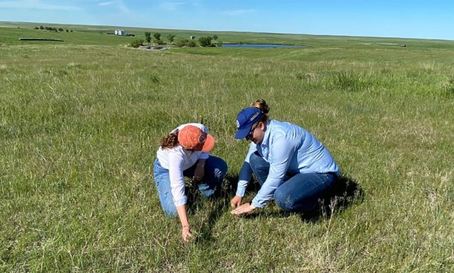 The South Dakota Women on the Range program will include topics such as range plant identification and forage production.
