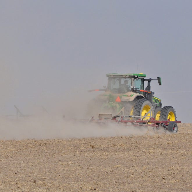 A farmer cultivates a field this summer north of Kanorado. Participants in the Kansas Farm Business Management Association planted more wheat and sorghum and less corn and soybeans this year than last. According to a Kansas economist, net farm income will end up better than expected for the year, but high production costs are likely to push it lower in 2022.